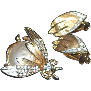 Madeleine Albright style Rhinestone and Faux Pearl Bug and Earrings Set