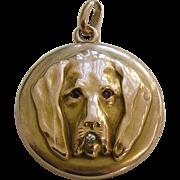Antique Dog Diamond Garnet 14k Locket