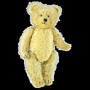 Lovely Vintage Mohair Teddy Bear by Diem