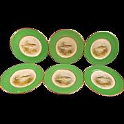 Six Fish Plates by Fondeville Ambassador Ware