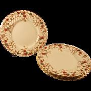 Minton Ancestral 10 Plates