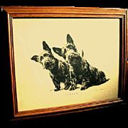 """Oak Framed 1930's Print of Scottie Dogs, """"LISTEN"""""""