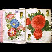 "Grandma Allen Makes ""Flower Scrapbook"" for Frankie Mains, 1897"