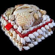 Doll Size Shell Trinket Box