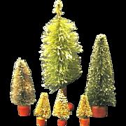 Six Assorted Vintage Bottle Brush Trees
