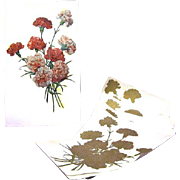 Vintage 1939 Flower Decals for Crafts, Furniture, Scrapbooking, and More