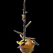 Tiny Birds Feed at Base of Miniature Twig Tree