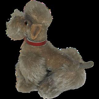 Steiff Snobby Poodle