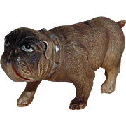 Celluloid Toy Bull Dog Figure