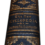 1873 The New Cyclopedia of Domestic Economy and Practical Housekeeper