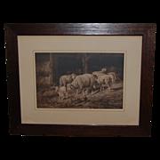 Vintage Prang Guyot Print of Sheep in Barnyard