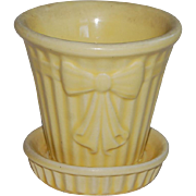Sweet Little Spring Yellow Flower Pot