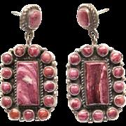 Native American Earrings-Pleasing Purple