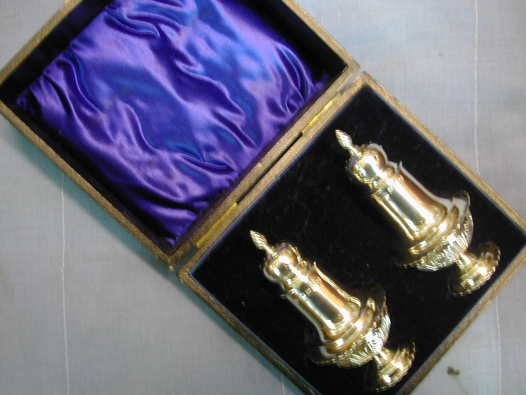 Cased Solid Silver Condiment ENGLISH Set