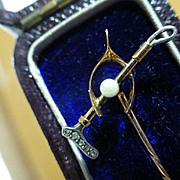 Antique wonderful Stock / Tie Pin