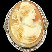 Edwardian 10K Filigree Carved Shell Cameo Portrait Brooch