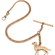 Victorian Rose Gold Filled Watch Chain With Hunting Dog Fob