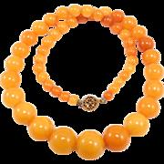 Antique Egg Yolk Amber Beads 24 Grams Rare Color Graduated