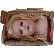 Replacement Antique German Doll Head in Original Box