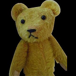Darling (American?) Antique Bear