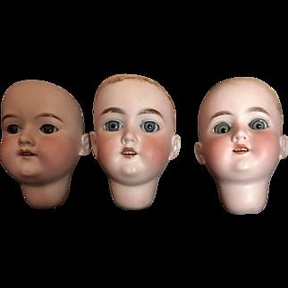 3 Bisque German Doll heads