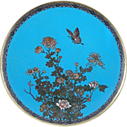 "Japanese Meiji 12"" cloisonné charger with a butterfly, chrysanthemum and peony circa 1910"