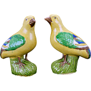 Pair of Chinese porcelain sancai glazed birds 18/19th century