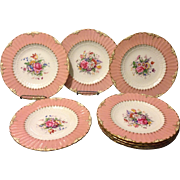 "Set of 8 Royal Crown Derby 9"" plates w Salmon glaze rims Flowers and Gold gilt"