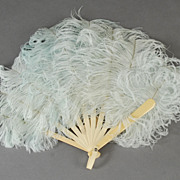 Celluloid and Ostrich Plume Fan