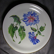 """Vintage ROSENTHAL Porcelain 13"""" Center Bowl EXOTIC FLORAL Kunstabteilung Sander LUSKE"""