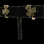 Victorian era 9 CT Gold Shamrock Earrings Connemara marble