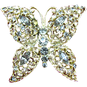 Very Large Butterfly brooch done in gold and smokey rhinestones