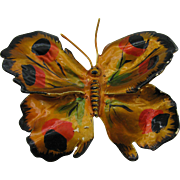 Large Butterfly Brooch in wonderful colors