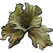 Spectacular Celluloid Orchid brooch