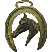 Horse bridle Rosette brass horse shoe and horses head