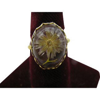 Fun High-Dome Ring with Dried Flowers $ 10 dollar special