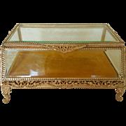 Vintage Lrg. 10 x 7  Luxurious Gold Jewelry Casket or Display Vitrine Box