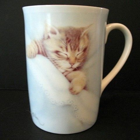 Sleeping Tabby  2 Cups Otagiri-Harrison 1980s