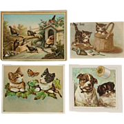 Trade Card Cats And Dogs-Lot of Four