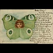 Fantasy Face In Butterfly- 1903
