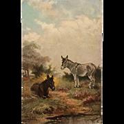 Tuck's Oilette- Hampshire Commons Donkeys