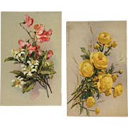 Beautiful Blossom Pair- Catherine Klein