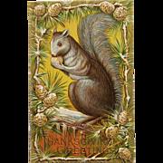 Squirrel's Thanksgiving Harvest