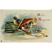 Tuck's Easter Postcard Chicks In Green Purse
