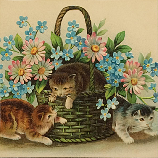 Kittens And Spring Flowers