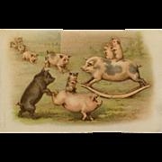 Piggy Playground Shenanigans