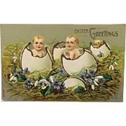 "Fantasy Easter Postcard ""Hatched"" Babies And Chick With Glitter"
