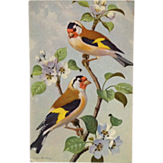 Pair Of Goldfinches In Blossoming Tree- Signed Eugen Hartung