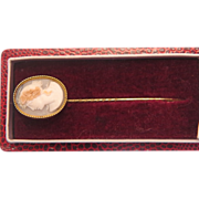 Victorian shell Cameo tie pin , 14 k yellow gold, 19th century
