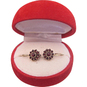 Antique pair of Bohemian Garnet earrings, silver, 19th century
